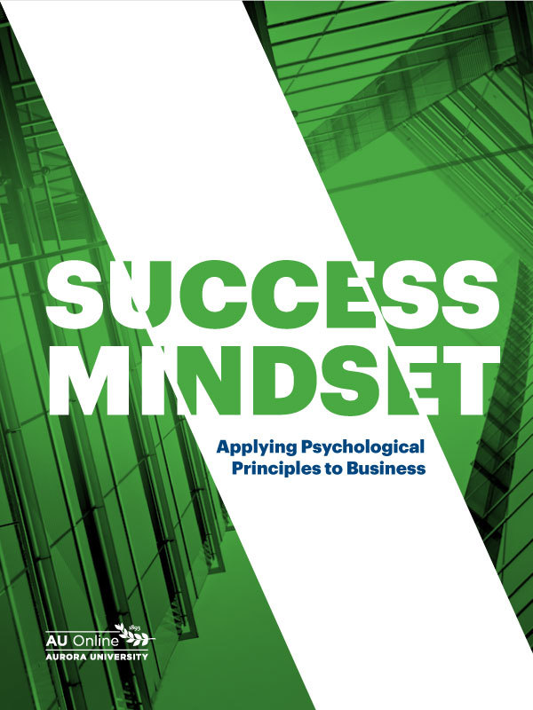 "Cover image for a guide to ""Success Mindset"" PDF."